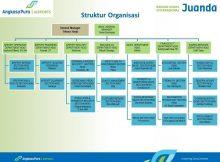 Struktur Organisasi AP